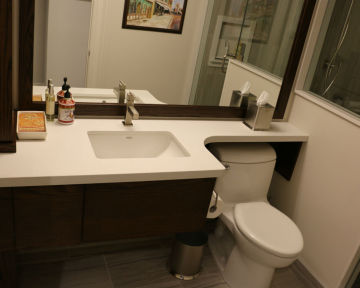 Toronto Condo Bathroom