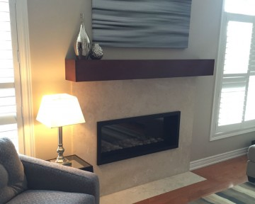 Fireplace Contemporary Reno