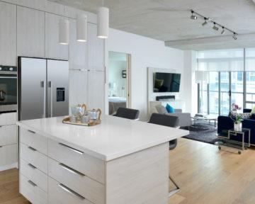 Toronto Kitchen Condo Renovator